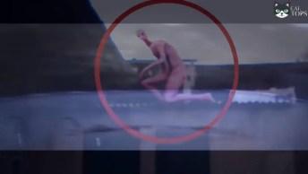 Gravações De Supostas Criaturas Não Identificadas Que Foram Gravadas Por Câmeras