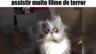 Marque Os Amigos E Amigas Que Ficam Assim Depois De Ver Um Filme De Terror!