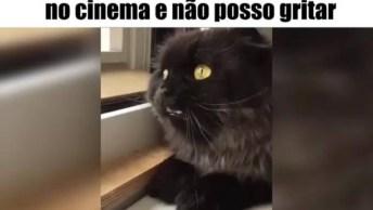 Quando Assisto Filme De Terror No Cinema E Não Pode Gritar De Verdade Hahaha!