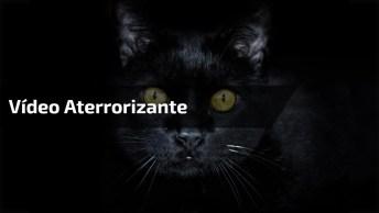 Vídeo Com Parição Aterrorizante, Não Assista Se Tiver Medo!