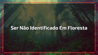 Vídeo Com Ser Não Identificado Em Floresta, É Assustador Confira!