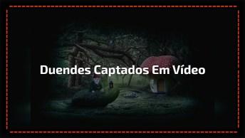 Vídeo De Duendes Que Foram Captados Por Câmeras, É Assustador!!!
