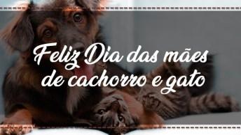 Feliz Dia Das Mães De Cachorro E Gato - Mãe De Animal Também É Mãe!