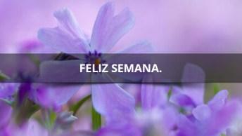Feliz Semana Para Todos, Para Compartilhar Com Amigos Do Facebook!