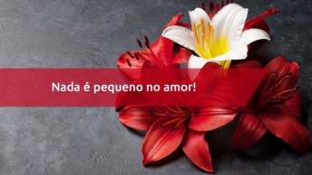 Frase De Amor Pequenos Momentos - Nada É Pequeno No Amor!