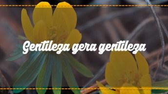 Gentileza Gera Gentileza, Se Você Também É A Favor, Compartilhe!