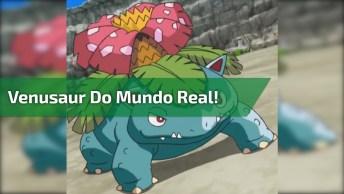 Para Todos Viciados Em Games O Venusaur Do Mundo Real, Kkk! Só Que Não!