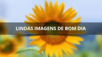 Lindas Imagens De Bom Dia Para Facebook, Compartilhe Com Seus Amigos!