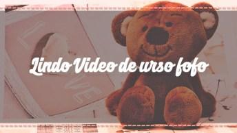 Lindo Vídeo De Urso Fofo Para Enviar Para Uma Amiga Ou Amigo Inesquecível!