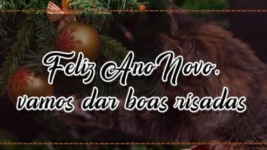 Mensagem Bem Humorada De Feliz Ano Novo, Vamos Dar Boas Risadas Com Esse Vídeo.