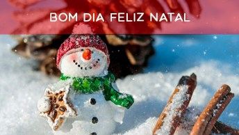 Mensagem De Bom Dia Para Natal Para Facebook - O Milagre Natalino!