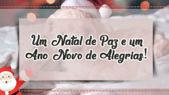 Mensagem De Natal Bem Linda - Um Natal De Paz E Um Ano Novo De Alegrias!