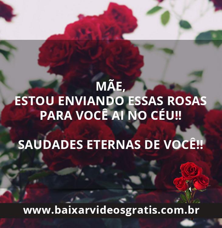 Mensagem para mãe Falecida, mãe receba essas rosas eu te amo.