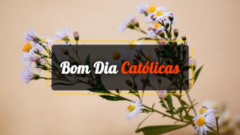 Vídeos de Bom Dia Católicas