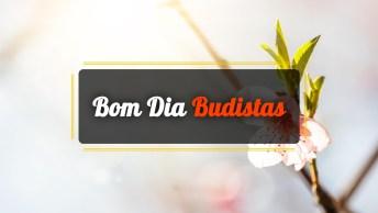 Vídeos de Bom Dia Budistas