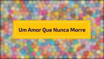 'Amizade É Um Amor Que Nunca Morre', Um Vídeo Fofo Para Facebook!