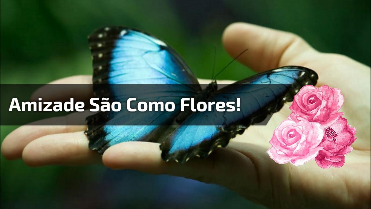 Amizade são como flores!