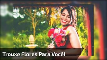 Frases De Amizade, Para Você Demonstrar Seu Carinho No Facebook!