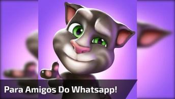 Gatinho Mandando Mensagem De Amizade, Para Amigos Do Whatsapp!