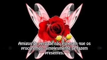 Mensagem De Amizade Para Amigo Ou Amiga Especial! Flores Para Você!