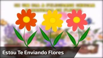 Mensagem De Amizade Para Amigo Ou Amiga! Estou Enviando Flores E Carinhos!