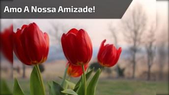 Mensagem De Amizade Para Enviar Para Amigo Ou Amiga Especial Do Coração!