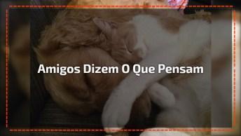 Mensagem De Amizade Para Facebook, Amigos De Verdade Dizem O Que Pensam. . .