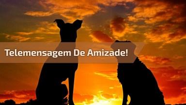 Telemensagem De Amizade Com Oração, Narrado Em Voz Masculina!
