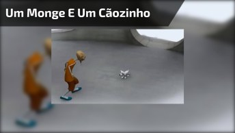 Um Monge E Um Cãozinho, Veja A História De Uma Amizade Verdadeira!