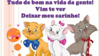 Vídeo Com Mensagem De Amizade Especial Para Facebook, Compartilhe!