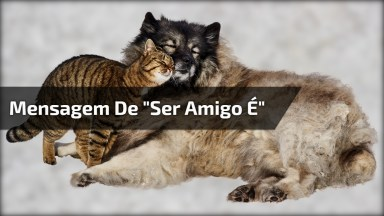 Vídeo Com Mensagem De 'Ser Amigo É. . . ', Perfeito Para Amigos Do Whatsapp!
