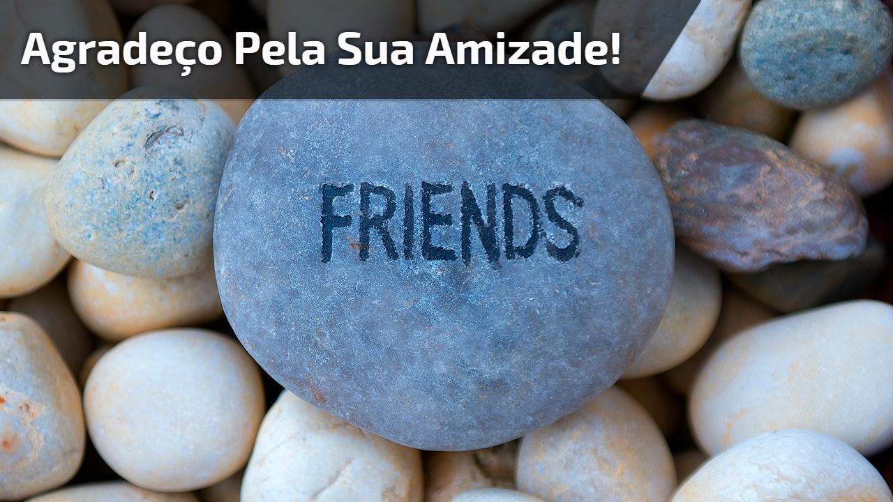 Agradeço pela sua amizade!