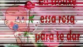 Vídeo Com Uma Rosa Para Alguém Especial, Para Enviar Pelo Whatsapp!