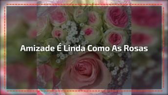 Vídeo De Amizade Com Lindas Imagens De Rosas, Envie Para Sua Amiga Especial!