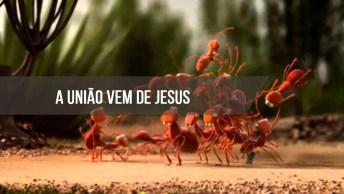 Vídeo Onde Mostra Que A União Vem De Jesus, Temos Que Ser Unidos!