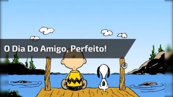 Vídeo Para O Dia 20 De Julho, O Dia Do Amigo, Simplesmente Perfeito!