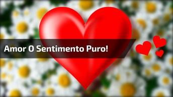 Amor É O Sentimento Mais Puro Do Mundo, Compartilhe Esta Mensagem!