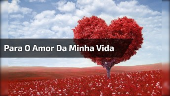 Frases De Amor Para Facebook, Compartilhe E Mande Uma Indireta Do Amor!