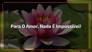 História De Amor Curta - Para O Amor, Nada É Impossível!