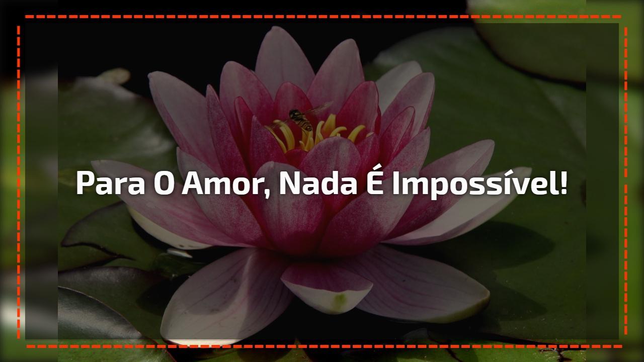 Para o amor, nada é impossível!
