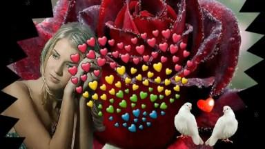 Imagens De Amor Para Compartilhar No Facebook, Marque A Pessoa Amada!