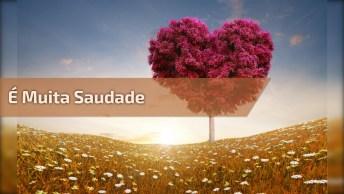 Mensagem De Amor E Saudade - Por Você Espero O Tempo Que For. . .