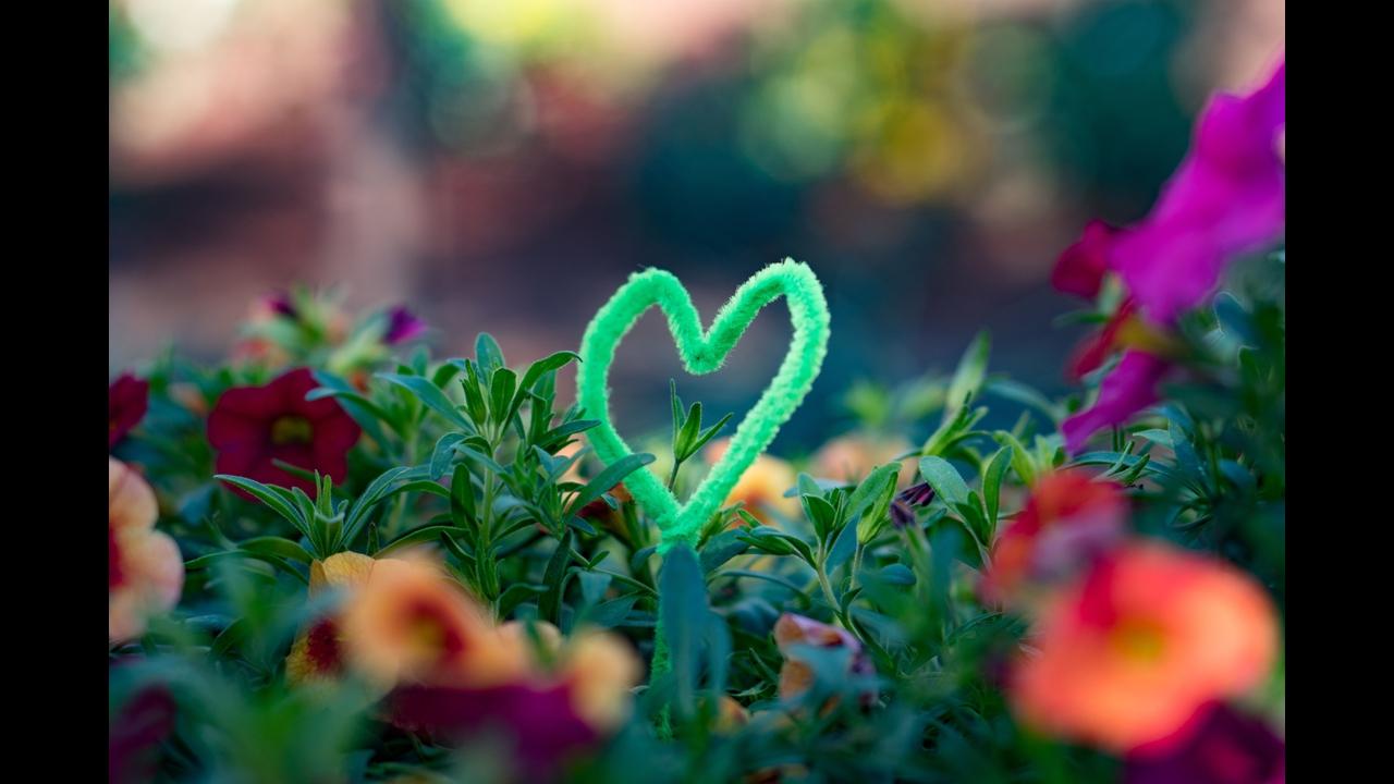 Mensagem de amor - Eu escolhi você