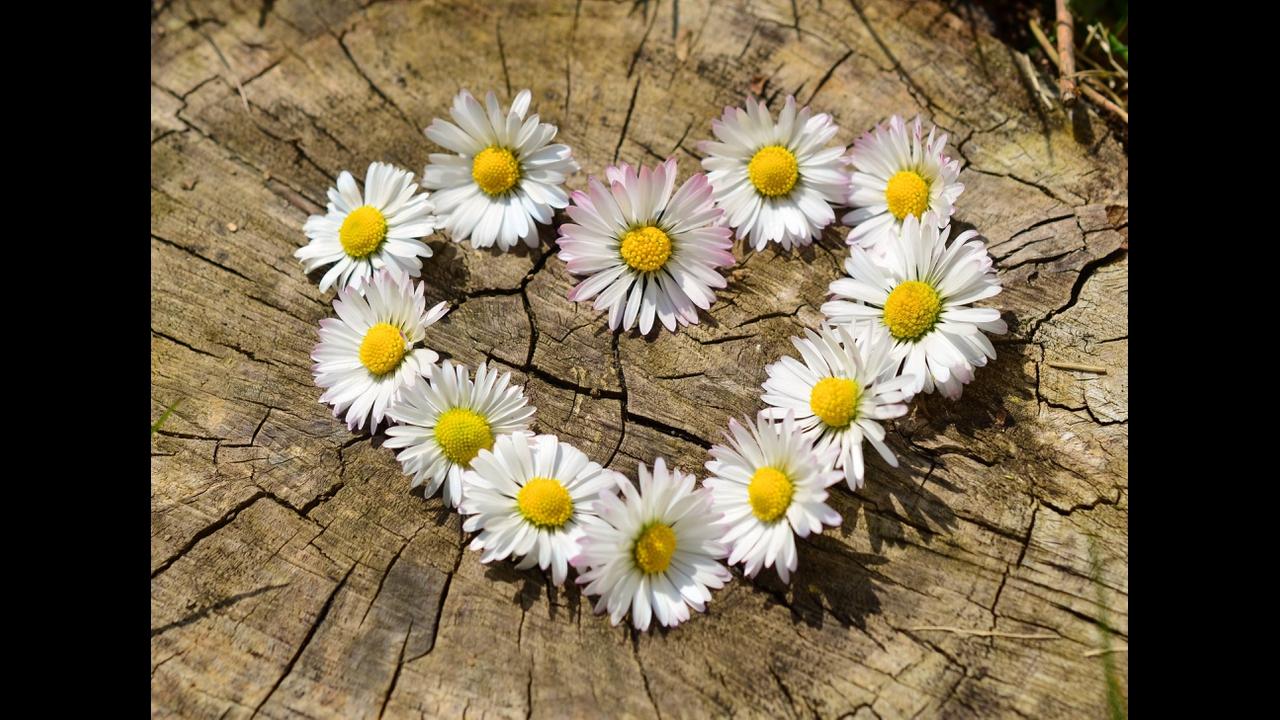 Mensagem de amor para alguém especial!