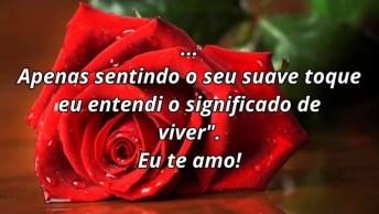 Mensagem De Amor Para Namorada, Com Lindas Rosas Vermelhas!