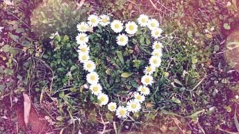 Mensagem De Amor! Você É Meu Melhor Presente, Te Amo A Cada Dia Mais E Mais!