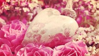 Um Pedido De Namoro E Outras Juras De Amor - Com Pedido De Reconciliação!