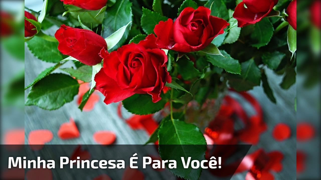 Minha princesa é para você!