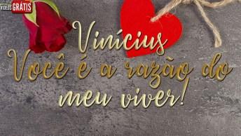 Vinícius Te Amo, Você É A Razão Do Meu Viver!