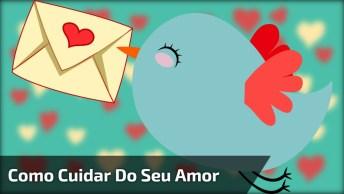 Vídeo Fofo Com A Música 'Mimada' Do Cantor Biollo, Para Enviar Pelo Whatsapp!